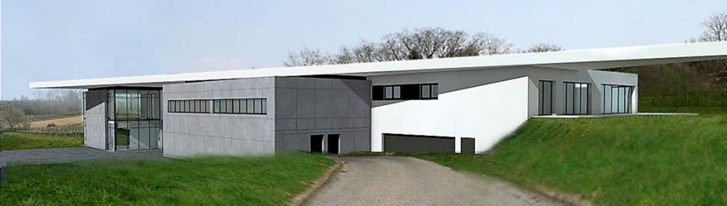 symbiose von wein und architektur ettenheim badische