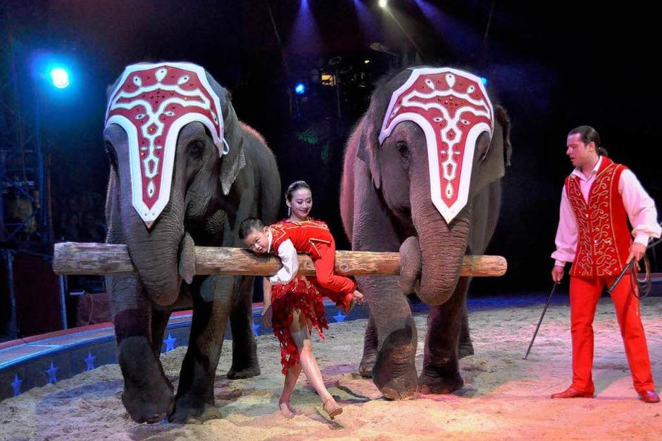 """Impressionen aus """"Vive le cirque"""" (Foto: Barbara Ruda)"""