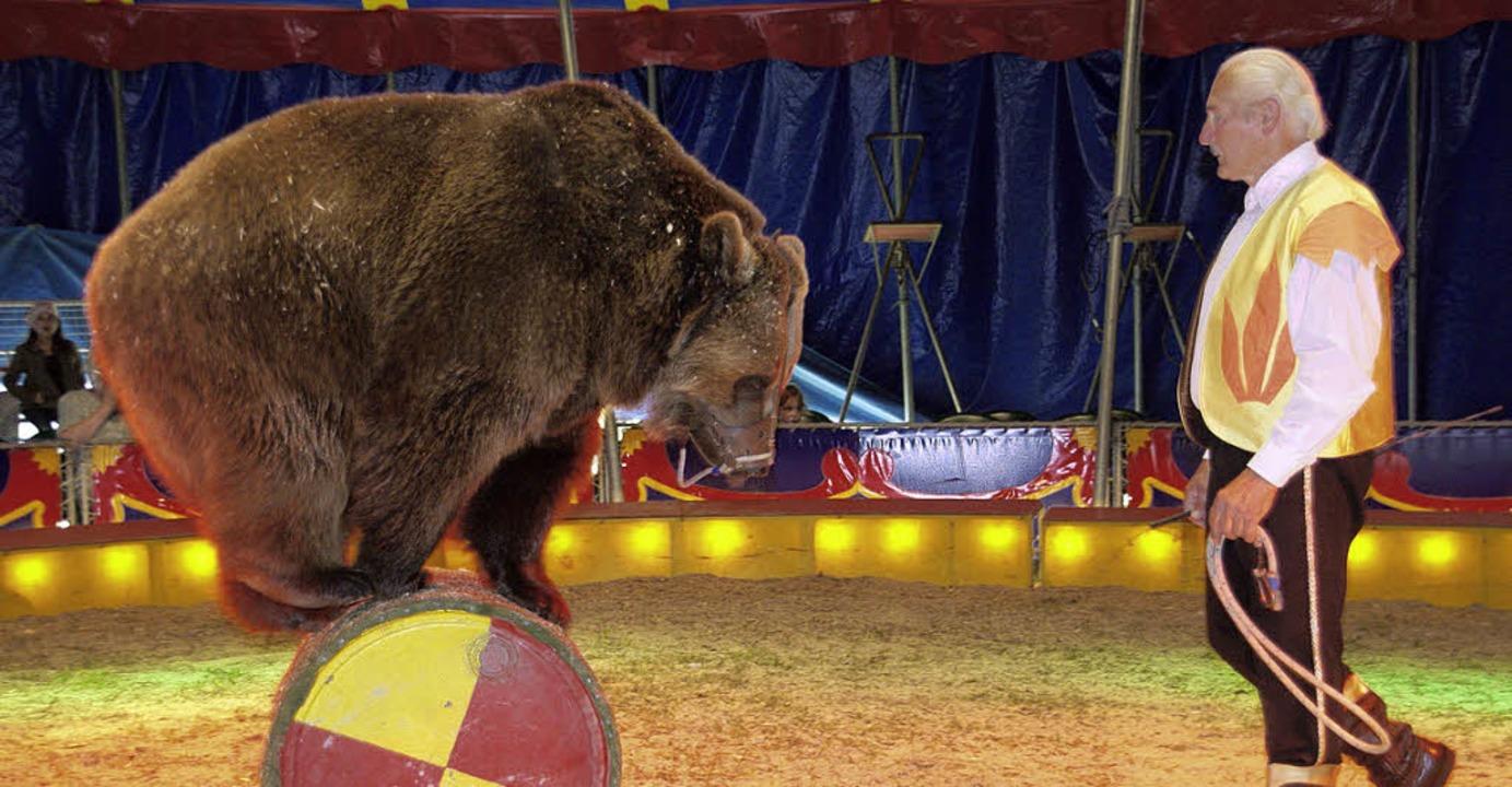 Auch zwei  Braunbären führen ihre Kunststückchen vor.   | Foto: H. Miloslavic