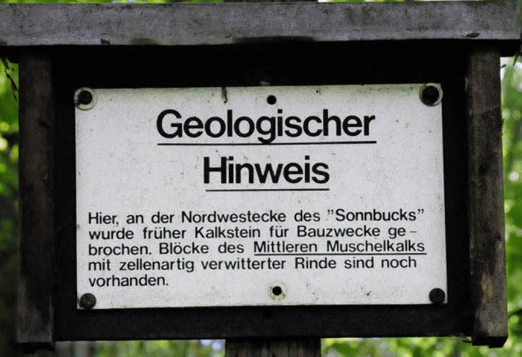 Klein und in die Jahre gekommen  sind ...es alten Lehrpfads am Mauracher Berg.     Foto: markus zimmermann