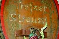 Trefzer's Wiistübli: Mit der Straußi fing es vor 25 Jahren an