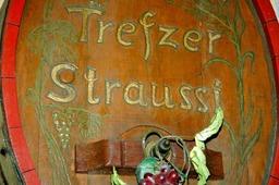 Trefzer's Wiist�bli: Mit der Strau�i fing es vor 25 Jahren an