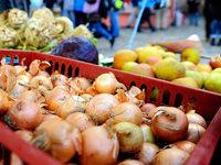 Der Regionalmarkt besucht Freiburg