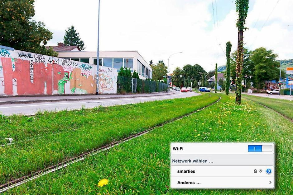 """Smarties"" in der Merzhauser Straße (Foto: Dominic Rock)"