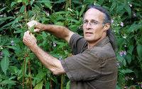 Kräuterkoch Peter Becker macht aus Neophyten Salat