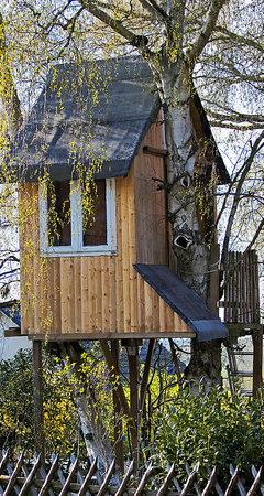 Offenburg gymnasiasten bauen ein luftschloss f r - Baumhaus architekturburo ...