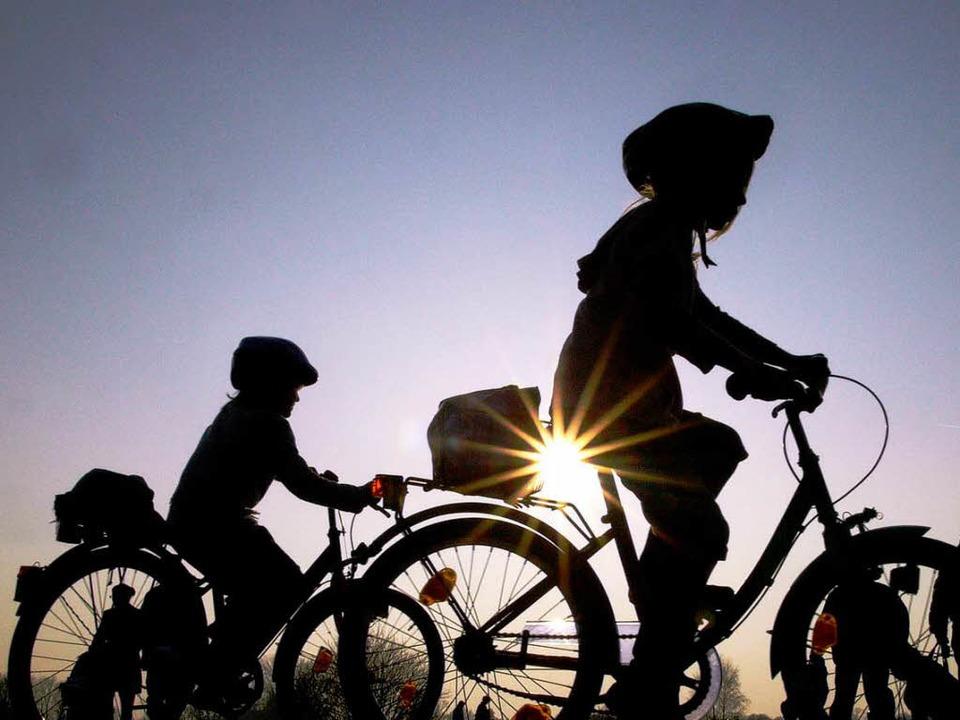 Nicht nur Kinder fahren mit Helm sicherer.  | Foto: dapd