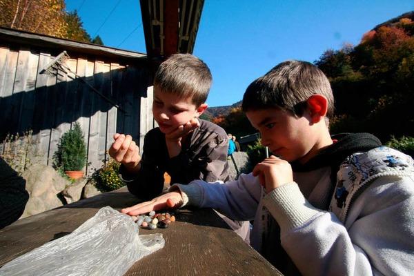 Viel Spa� hatten die Kinder beim Programm der Herbstferienbetreuung des F�rderverein, Kinder, Jugend und Kultur.