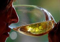 Wichtige Weinführer geben heimischen Winzern gute Noten