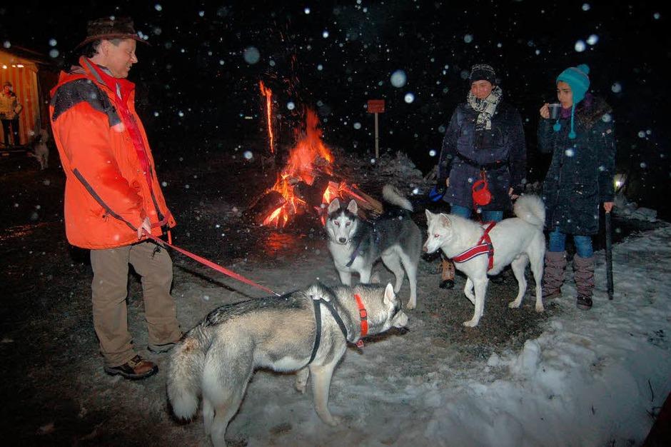 Impressionen von den Schlittenhunderennen in Todtmoos (Foto: Hans-Dieter Folles)