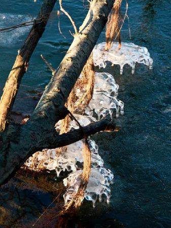 Eisige Sch�nheit am Rhein bei Hartheim