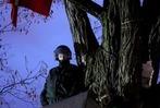 Fotos: S21 – Polizei r�umt Schlossgarten in Stuttgart