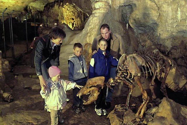 Höhlen in der Region