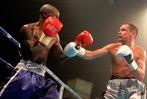 Fotos: Der WM-Boxkampf in Elzach