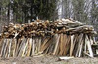 Der Wald sorgt f�r Behaglichkeit