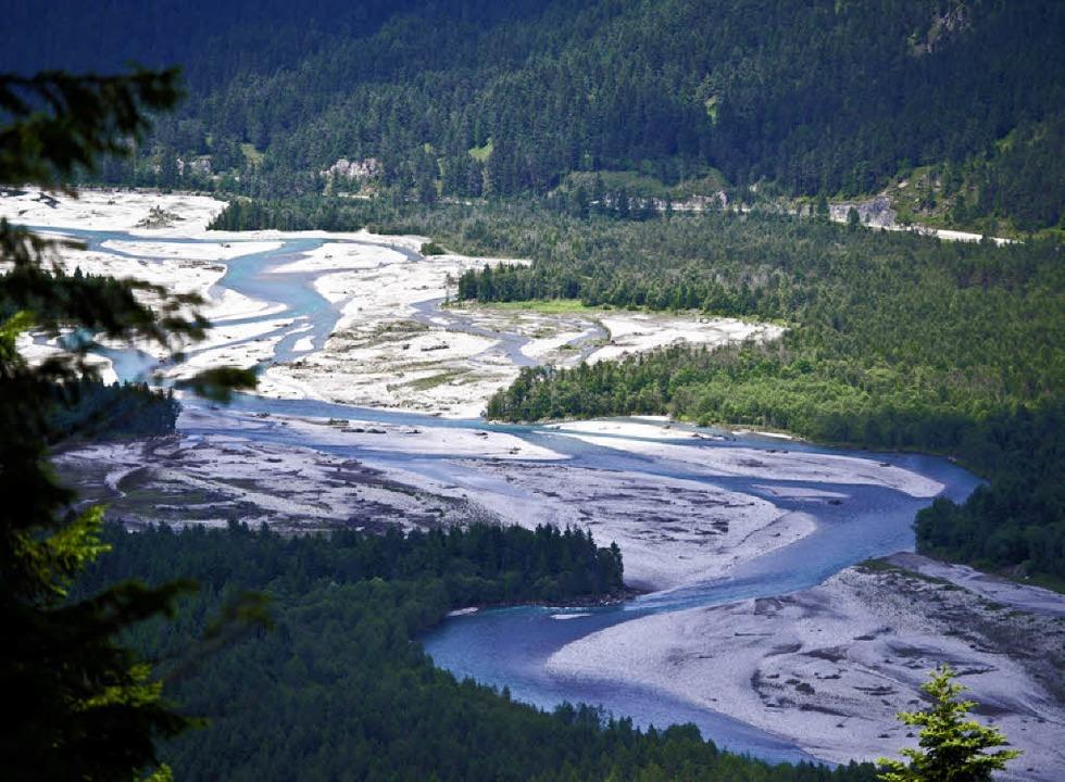 Blick vom Baichlstein: der naturbelassene Lech    Foto: Andrea Schiffner