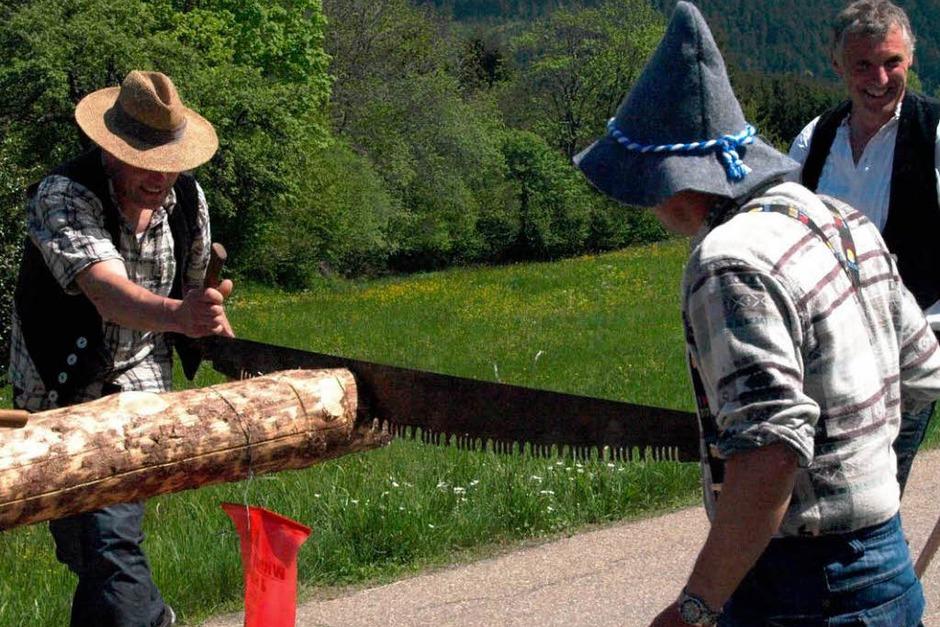 <ppp> und </ppp>fleißige Mitstreiter markierten vorsorglich mit abgesägten Rollen den Rückweg. (Foto: Karin Stöckl-Steinebrunner)