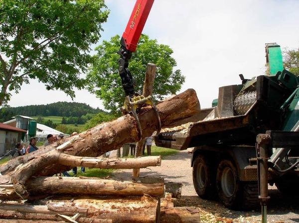 """Hackschnitzelproduktion: Scheinbar m�helos macht  die Maschine aus m�chtigen Baumst�mmen  """"Kleinholz""""."""