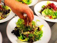 Gastronomie: Die Hygiene-Ampel ist gescheitert