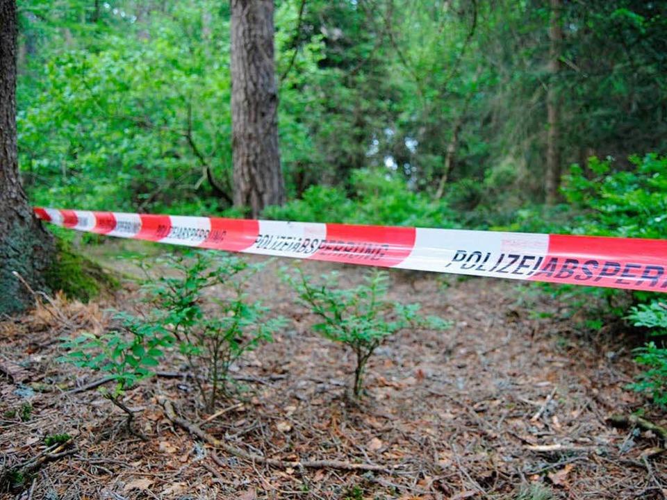 Der Fundort der Leiche nahe Gündelwangen.  | Foto: Kamera 24.TV
