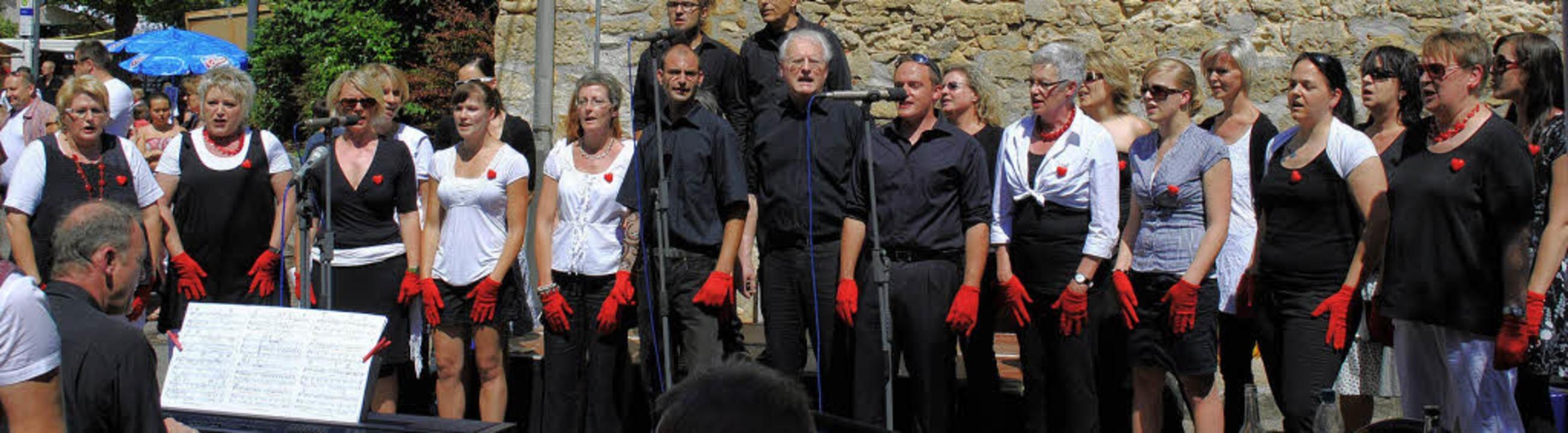 Mit einer gelungenen Premiere sang sic...n Zuhörerschar beim Binzener Dorffest.  | Foto: Reinhard Cremer