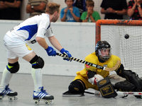 Rollhockey-Posse: RHC Friedlingen löst sich auf