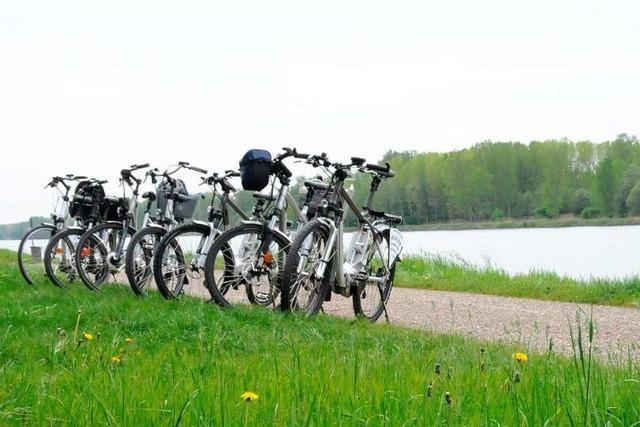 E-Bike-Touren durch Rheinauen