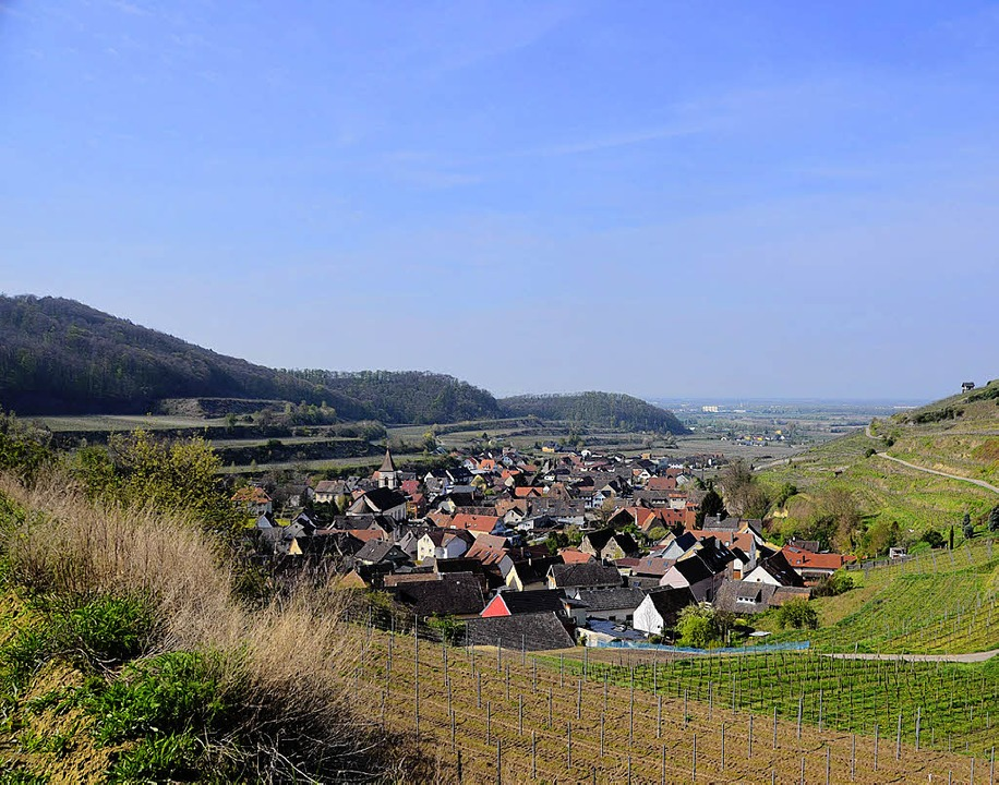 Eingebettet in Weinberge: Achkarren se...Bauvorhaben auf die Innenentwicklung.   | Foto: Anita Fertl