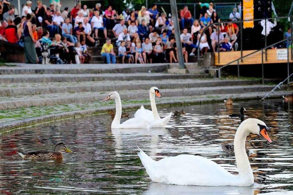 Seefest im Freiburger Seepark (Foto: Thomas Kunz)