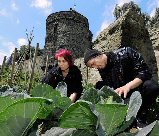 Andernach versorgt seine Bürger mit Gemüse