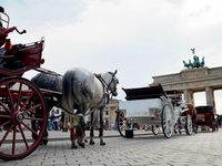 Berlin: Windelpflicht f�r Kutschpferde?