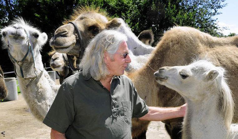 mundenhof der herr und meister der kamele geht freiburg badische zeitung. Black Bedroom Furniture Sets. Home Design Ideas
