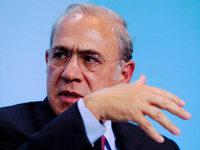OECD f�r den Kauf von Staatsanleihen