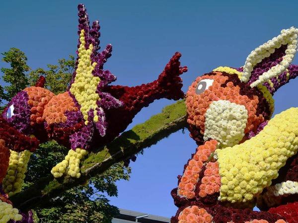 Impressionen vom 83. Blumencorso in Sélestat am vergangenen Wochenende