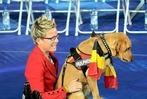 Fotos: Die Paralympics in London wurden eröffnet