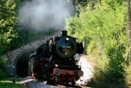 Fotos: BZ-Wanderung entlang der Sauschwänzlebahn