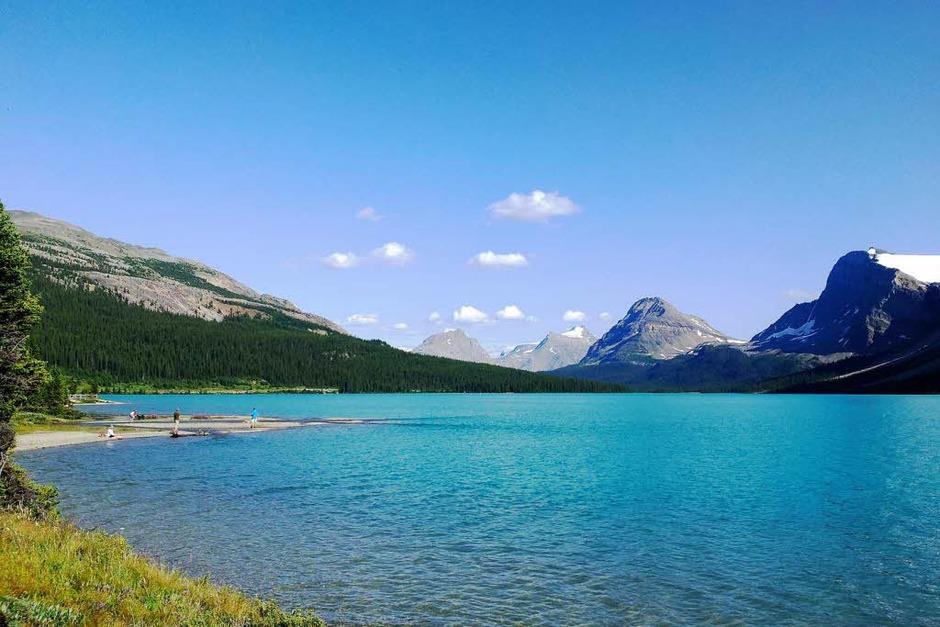 Bow Lake in den kanadischen Rocky Mountains Foto: Henry Richter,  Schmieheim (Foto: BZ)