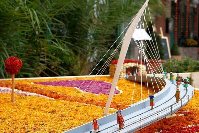 Fotos: Die Blütenwagen bei der Chrysanthema