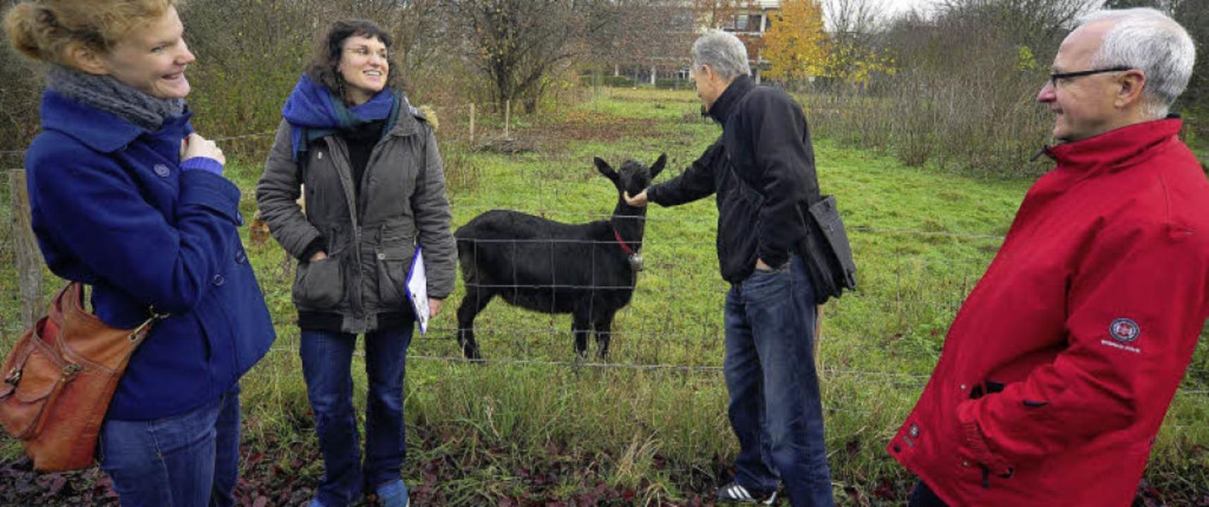 Ortstermin in der Botanik: An der Bege...n (Rektor der Anne-Frank-Grundschule).  | Foto: Thomas Kunz