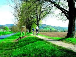 Radfahren im Markgr�flerland