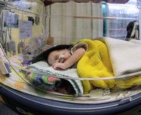 Tote Fr�hchen in Bremen: Kritik an fehlender Hygiene