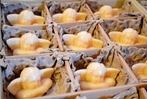 Fotos: Der Weihnachtsmarkt im Hotzenwald