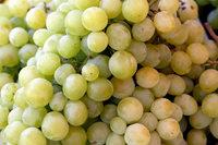 Einheimische Tafeltrauben sind oft mit Pestiziden belastet