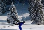 Fotos: Rucksacklauf – himmlischer Höllentrip durch den Schwarzwald