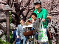 Fotos: So begrüßt die Welt den Frühling