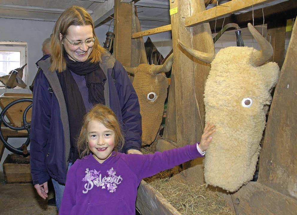 Flauschige Kuh: Die kleine Besucherin ...e Viehwirtschaft in vergangener Zeit.   | Foto: Helena Kiefer