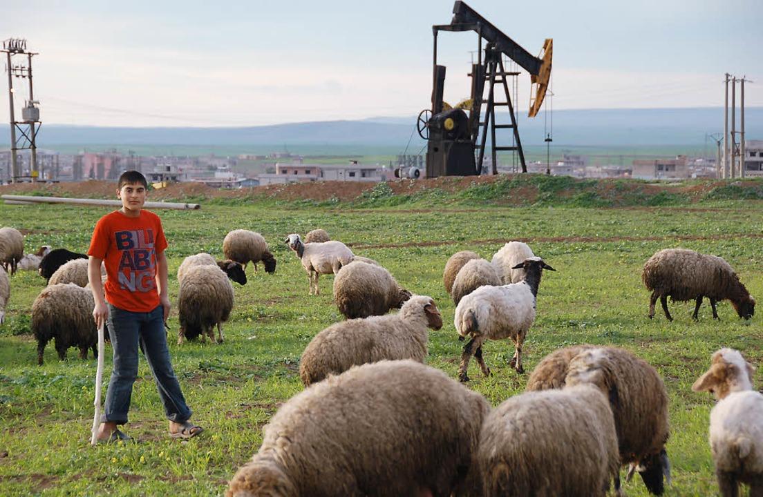Die Förderanlagen bei Rumeilan sind vo...gt, bald soll hier wieder Öl sprudeln.  | Foto: Wrase