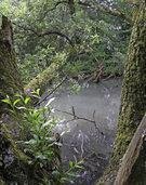 Naturschutzbund unternimmt eine Exkursion in die Biologische Station der Petite Camargue