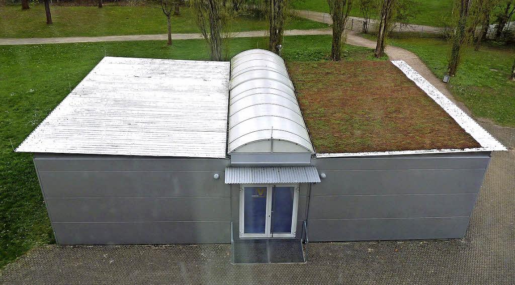 gr nes dach gegen hitze lahr badische zeitung. Black Bedroom Furniture Sets. Home Design Ideas
