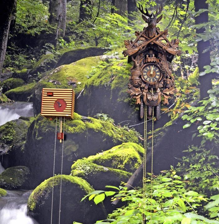 Kuckucksuhrenwand in der Tourist-Information    Foto: Sylvia-Karina Jahn
